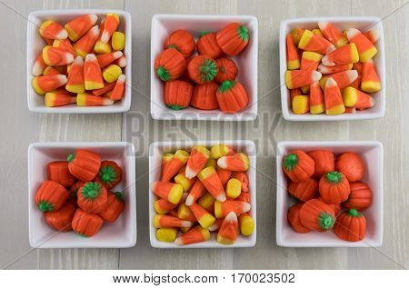 Six Square Bowls of Candy Corns and Pumpkins close up
