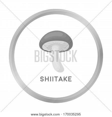 Shiitake icon in monochrome style isolated on white background. Mushroom symbol vector illustration.