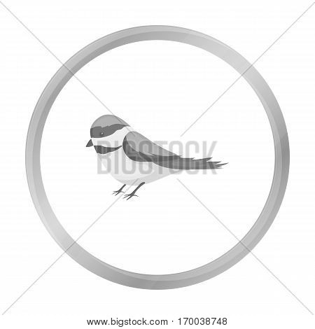 Parus icon in monochrome style isolated on white background. Park symbol stock vector illustration.