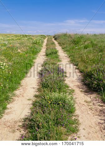 Dirt road track in a country landscape during spring