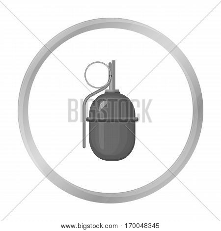 Military grenade icon in monochrome style isolated on white background. Military and army symbol vector illustration