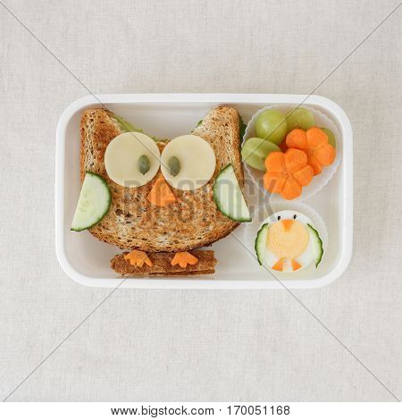 Owl healthy sandwich lunch box fun food art for kids