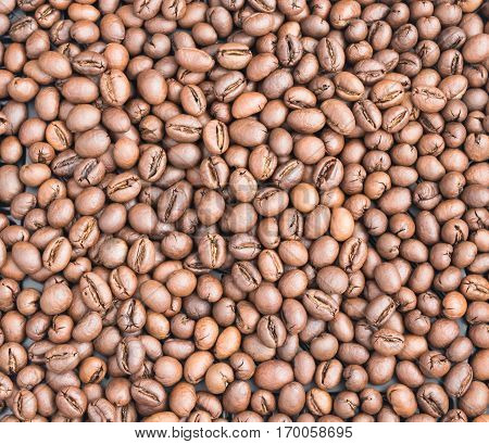 Medium Roasted Arabica and Robusta Coffee Beans Background