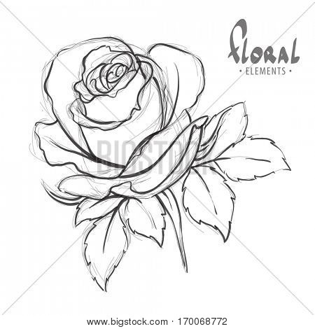 Outline of roses on a white background with space for your congratulations