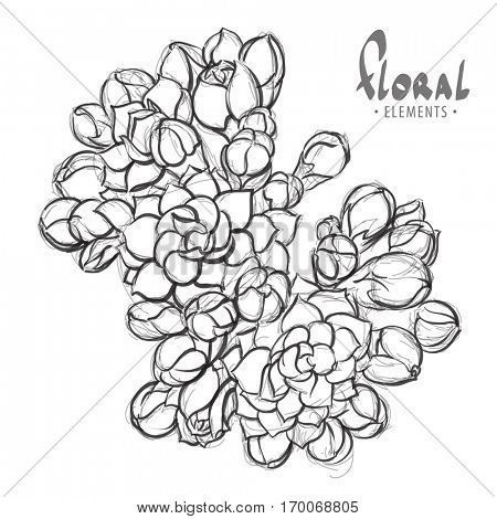 Sketch flower blossoms in black and white with a place for writing
