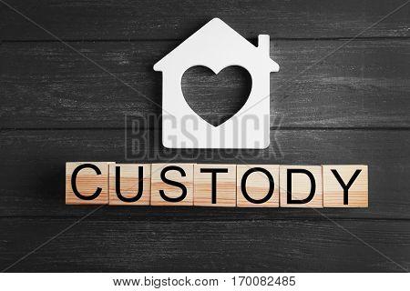 Word CUSTODY made of wooden blocks on dark background, closeup