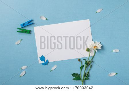 Spring top view composition: blank stationary template / invitation mockup scattered petals around white flower with green stem green and blue clothespins. Sky blue background with copy space for text. Flat lay.