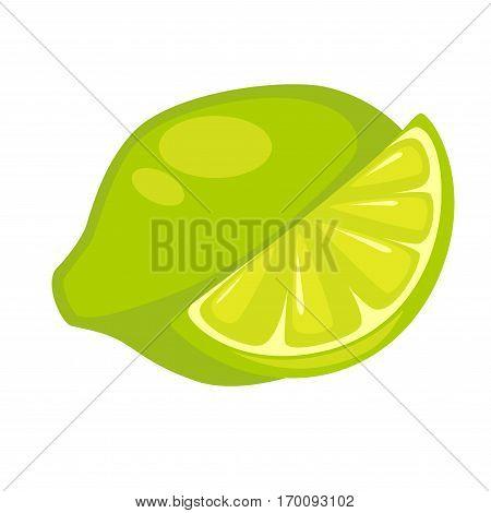 Lime exotic fruit isolated on white. Green lemon slice edible citrus hybrid called kaffir or dessert lime. Excellent source of vitamin C, exotic nutrition tropical fruit, realistic vector illustration