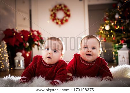 Christmas time. Cute baby twin sisters crawl together on the floor. Holiday decorations, Christmas tree