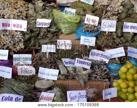 Dried herbs for infusions in the bolivian market