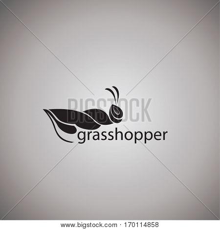 grasshopper ideas design vector illustration on background