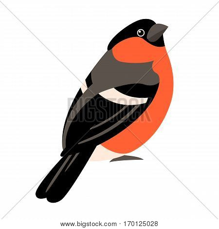 bullfinch vector illustration style Flat side profile
