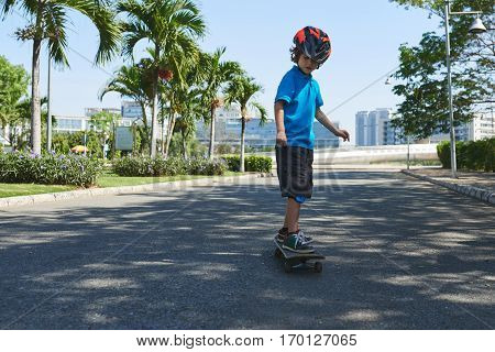 Enthusiastic little boy in bright helmet and knee pads riding skateboard in lovely sunny park with palm trees