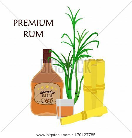 Alcohol drink, rum, glass, barrels and sugarcane. Jamaica rum in flat style design. Vector illustration. Liquor for pubs restaurants hipster bars