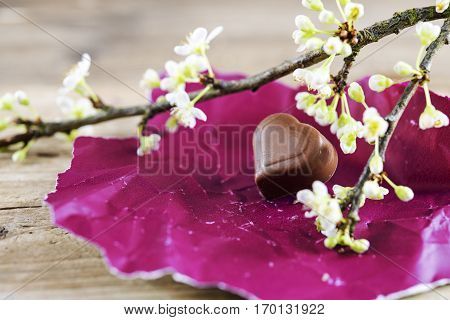 Chocolate heart praline on pink red paper and a blossom branch for valentine's or mothers day close up selected focus very narrow depth of field