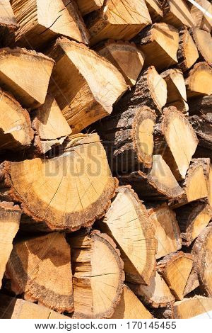 Close Up Shot Of A Bunch Of Firewood