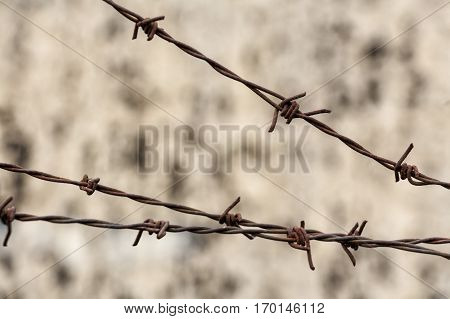 Close-up of corroded barbed wire on blurred old brick wall. International Day of Commemoration in Memory of the Victims of the Holocaust. Amnesty concept.