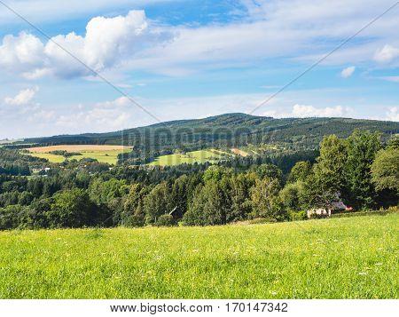 Middle European countryside, Czech republic, Jeseniky in summer, meadow under the Mala Destna mountain