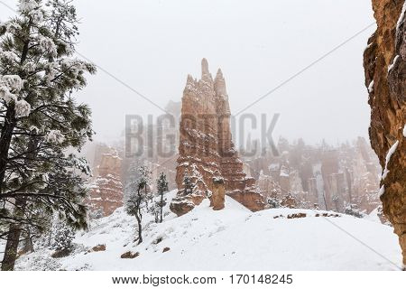 Falling snow on the hoodoos at Bryce Canyon National Park in Southern Utah.