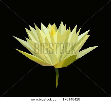 polygonal yellow lily, polygon flower, isolated vector illustation