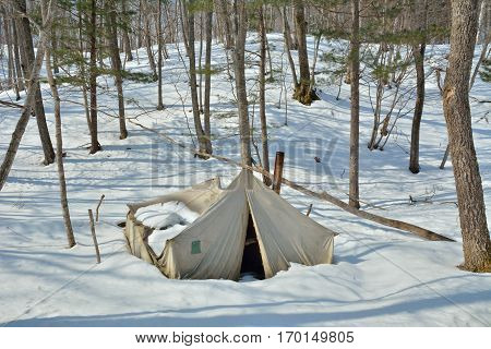 The broken tent in winter forest. Russian Far-East.