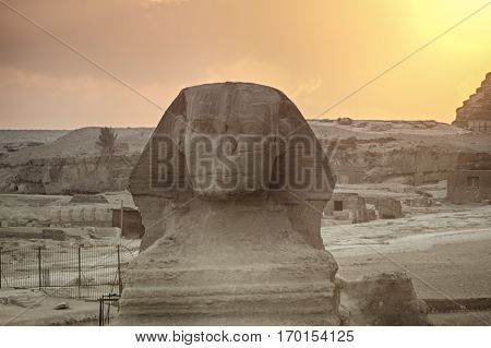 The Great Sphinx of Giza on a sunset background Egypt