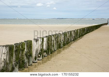 Seaside view with beach, wooden poles and cloudy sky, Breskens, The Netherlands