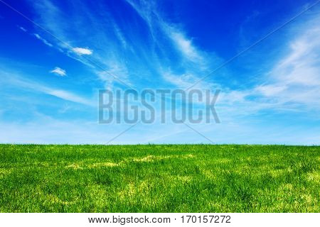 Spring cloudy landscape with green grass field.