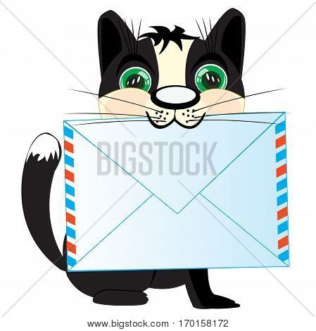 Pets cat with envelope in teeth on white background is insulated