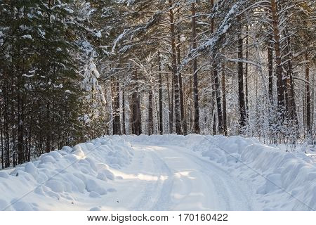 Winter road in the forest. Somewhere in Siberia.