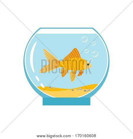 Gold fish in small bowl isolated on white background. Orange goldfish in water aquarium vector illustration. Gold fish underwater in aquarium
