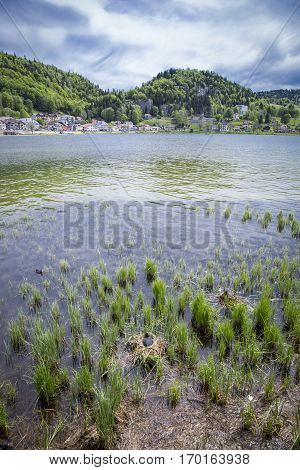 landscape of Jura mountain shore of Lac de Joux - Switzerland