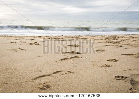 Landscape view on quiet beach in the winter, Vendée, France