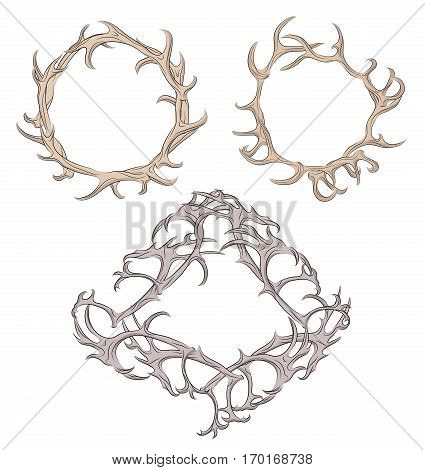 Set of different frame of deer antlers. Vector element for your design