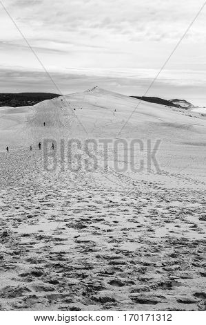 Black and white view from Dune of Pilat or Pyla - the largest sand dune in Europe Aquitaine France