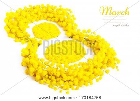 Greeting Card International Women's Day on March 8th. Branches of mimosa in the form of number eight