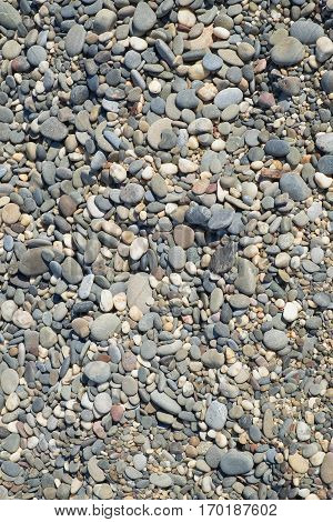 Stone texture sea. Background texture nature vertical