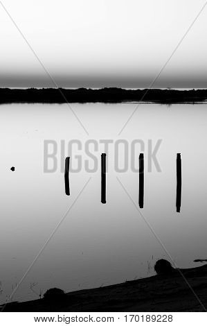 Black and white landscape at sunset with reflection in still water over nature reserve Casse de la Belle Henriette Vendee France