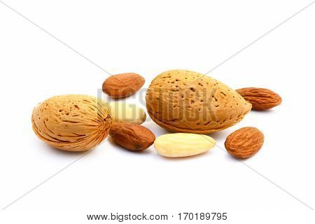 Healty almond in shell isolated on white background