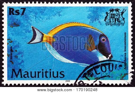 MAURITIUS - CIRCA 2000: a stamp printed in Mauritius shows Powder blue tang acanthurus leucosternon is a species of marine tropical fish circa 2000