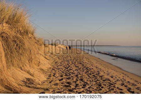 view on a beach at sunset with golden sand an quiet sea, Casse de la Belle Henriette, located between l'Aiguillon sur Mer and la Tranche sur Mer, Vendee, France