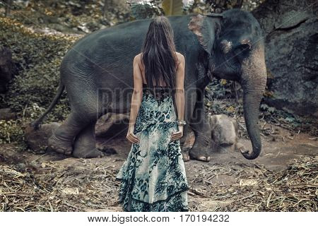 Fashionable lady posing with an elephant