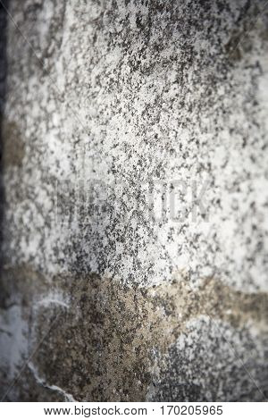 close up on a textured decrepit concrete wall