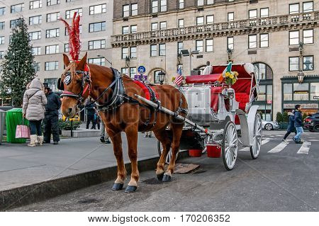 New York, February 6, 2017: An idle horse and carriage stand on the Grand Army Plaza in Manhattan waiting for riders.