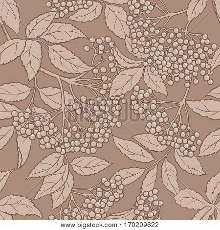 elderberry vector seamless pattern on color background
