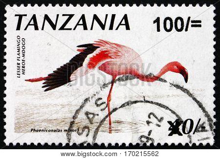 TANZANIA - CIRCA 1998: a stamp printed in Tanzania shows Lesser flamingo phoeniconaias minor bird circa 1998