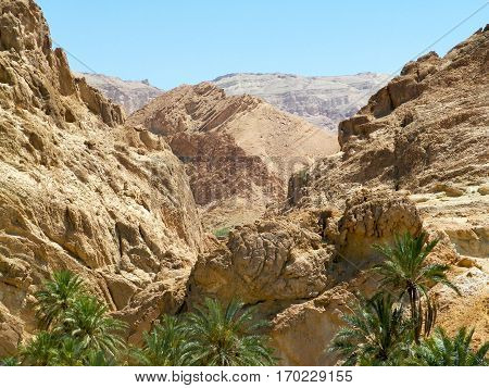 Stone desert and the oasis. Oasis in the mountains in the desert. Tourism and travel.
