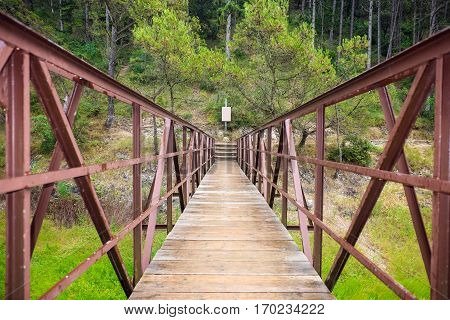 Old red rusty footbridge leading in tranquil forest over green grass
