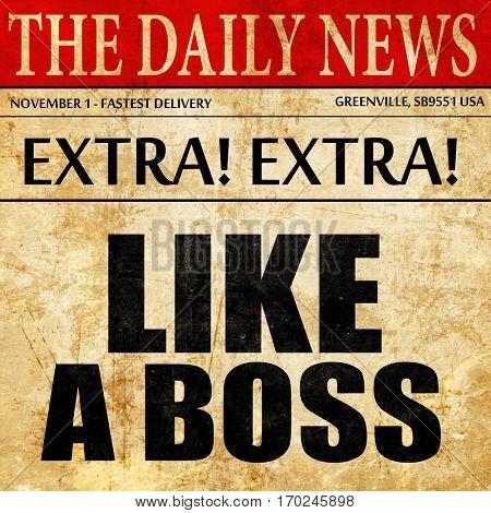 like a boss, newspaper article text