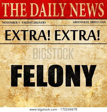 felony, newspaper article text